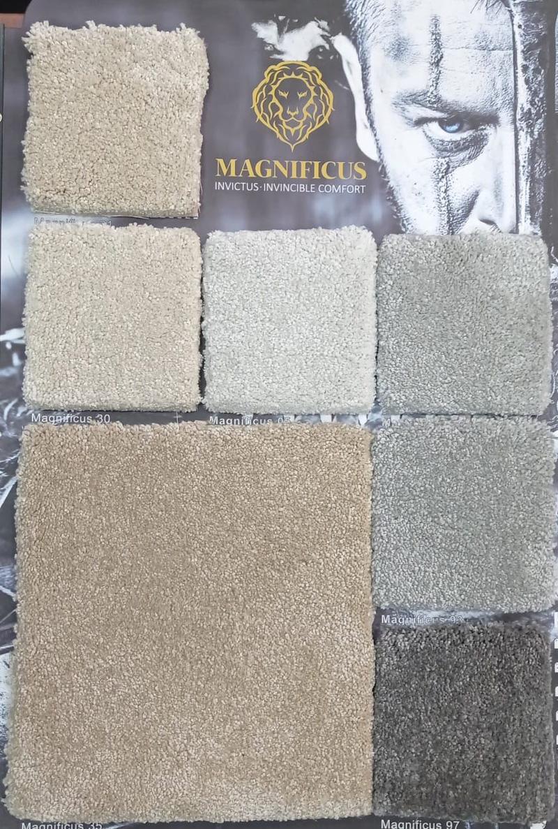 Magnuficus